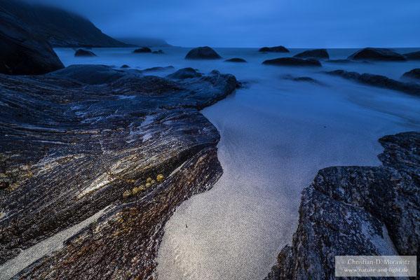 Napfschnecken in der Abenddämmerung am Strand