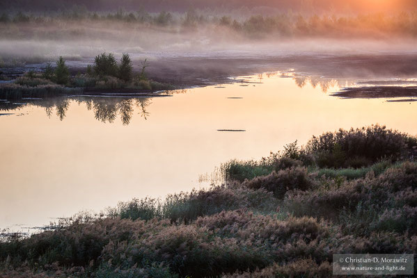Morgennebel im Sonnenaufgang