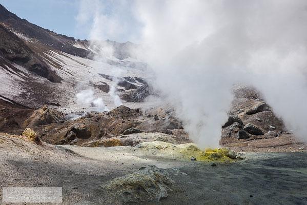 Solfataren im Krater des Mutnovsky Vulkans