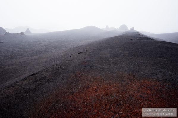 Im Nebel scheint die Landschaft wie von einer anderen Welt zu sein