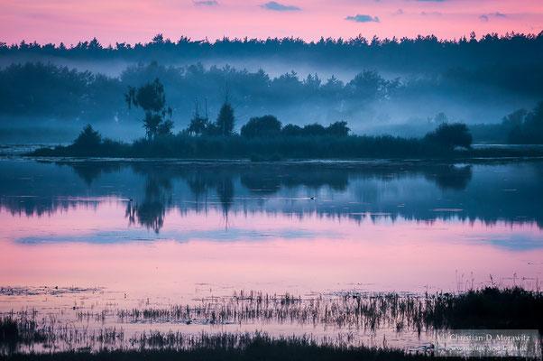 Abendstimmung an einem Teich