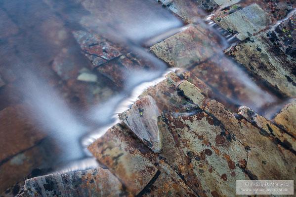 Bachdetail im Rondane Nationalpark