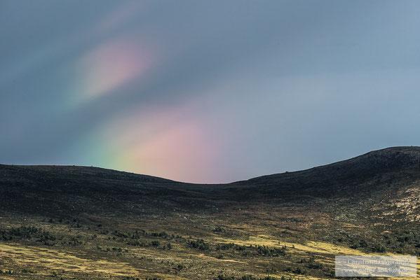 Regenbogen über dem Dovrefjell Nationalpark