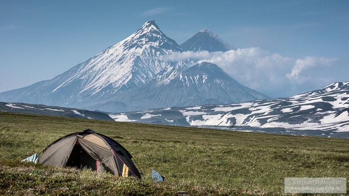 Zelten auf der Tundra mit Blick auf den aktiven Kljutschevskoi Vulkan (4750 m, hinten rechts), den Kamen (4580 m, hinten links) und den aktiven Bezymianny Vulkan (2882 m, vorne)