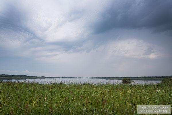 Gewitterwolken über dem Krankesjön