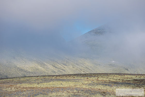 Nebelstimmung im Rondane Nationalpark