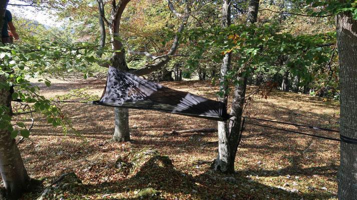 Baumzelt - Waldschläfer