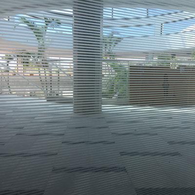 Colaboración na obra do Hotel Corbato. Lanzarote