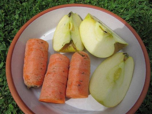 Äpfel & Karotten