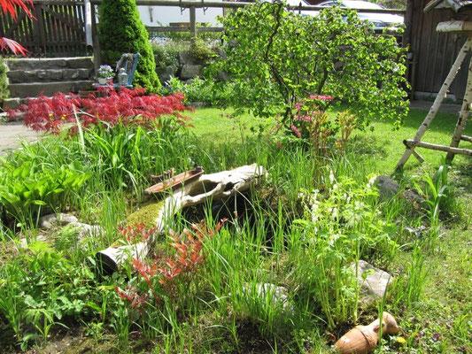 Der Garten wird Gepflegt von meiner Frau