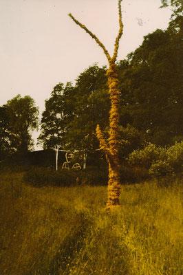 Aktion in der Landschaft, bei Dolgelin (Seelower Höhen), 1989, zwei Objekte