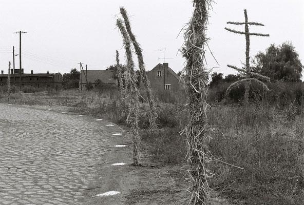 WEG Gestaltung, Holz, Stroh, 2-3m, Kalkpunkte, Sachsendorf Werder, 1991