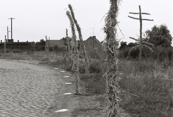 WEG,  Gestaltung des Weges, Holz, Stroh, Kalkpunkte, Sachsendorf-Werder, 1991