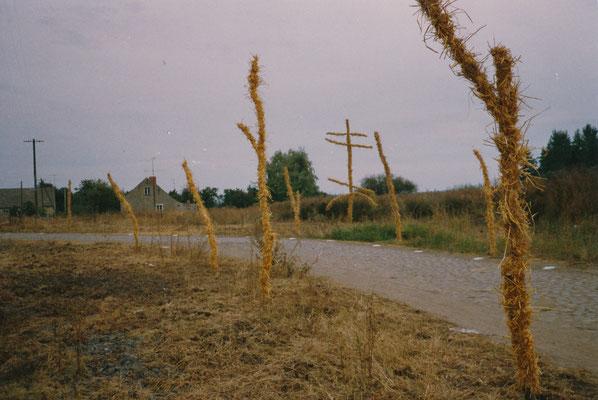 WEG-Gestaltung, Sachsendorf-Werder, 1991,