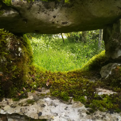 Sur les murs de pierres sèches