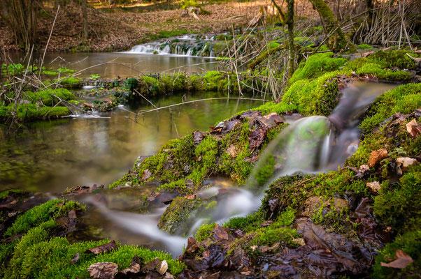 Um den Bachlauf des Brunnenbachs führt ein Naturlehrpfad.