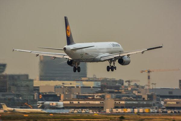 """Südbahn / """"Affenfelsen"""" - D-AISR Landung im Abendlicht (Airbus A321-231 // Lufthansa)"""