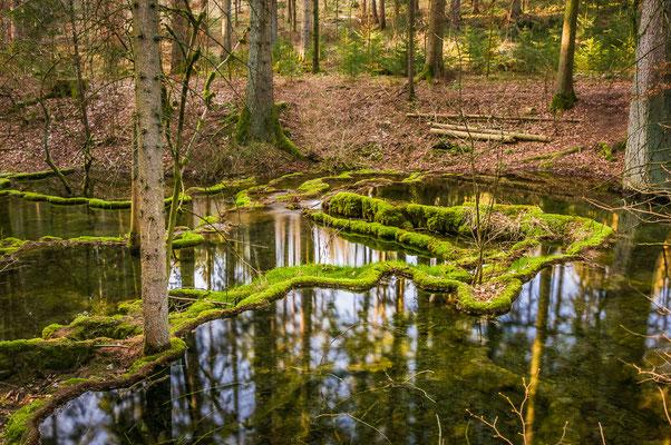 Tolle Formen stellt die Natur hier mit den Sinterterassen zur schau...