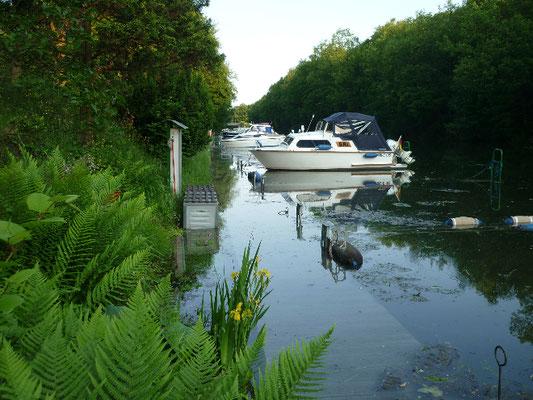 Einige Boote sind im Hafen verblieben, ihre Leinen müssen ständig korrigiert werden