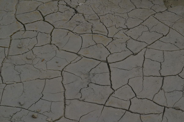 la tangue sèche et craquèle