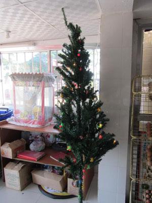 Weihnachten in Tansania: Ja, auch hier gibt es Weihnachtsbäume, allerdings aus Plastik.