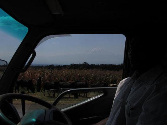 Der Kilimandscharo zeigte sich bei der Fahrt zum Flughafen, als wir die Gaeste von Helfen macht Schule abholen wollen.