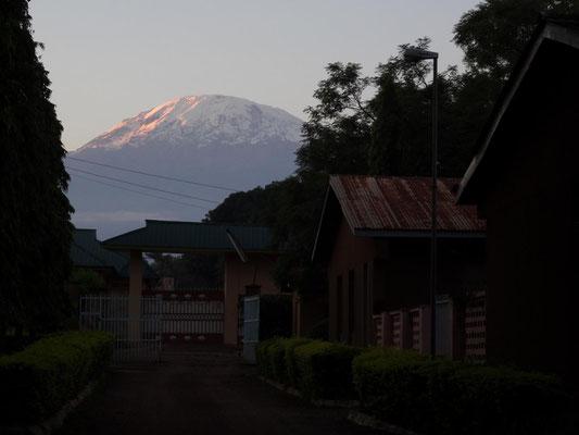 Kilimandscharo im Abendlicht vom VTC aus gesehen.