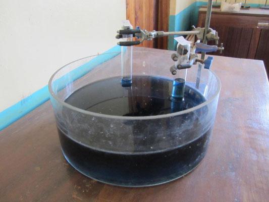 Mit den Schülern durchgeführter Versuch zur Zusammensetzung der Luft (rechts reiner Sauerstoff, links Luft) und rosten von Eisenwolle.