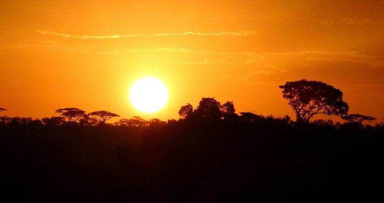 Ein Sonnenaufgang in der Serengeti.