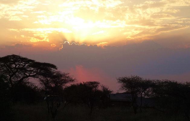 Sonnenuntergang vor einem aufziehenden Gewitter in der Serengeti.