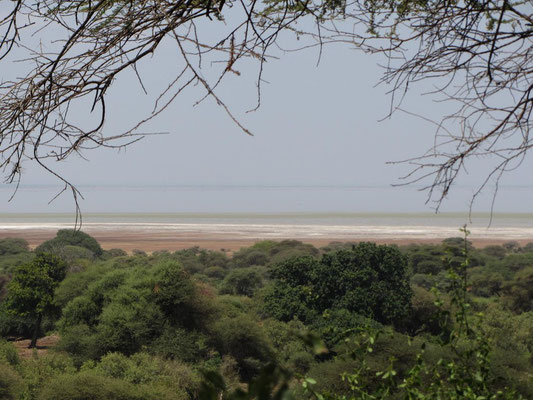 Die Salzablagerungen am Lake Manyara sehen wie eingefrorener Wellenschlag am Ufer eines Sees oder Meeres aus.