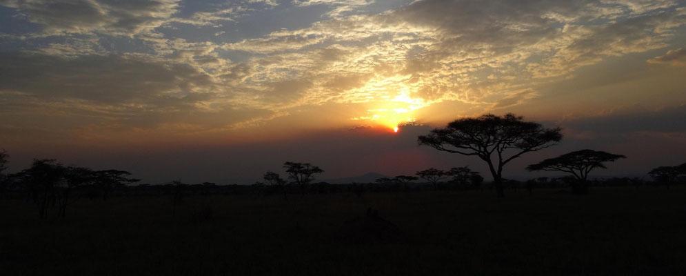 Sonnenuntergang in der Serengeti, August 2015