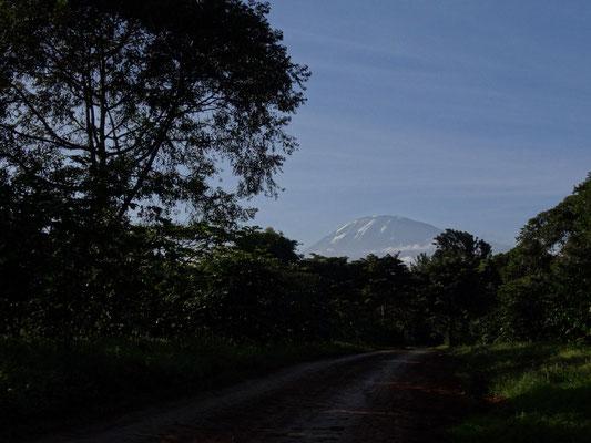 Der Kilimandscharo im Abendlicht.