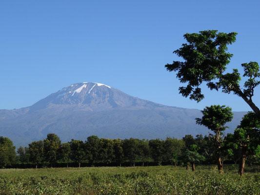 Der Kilimandscharo ist nicht immer so wolkenfrei wie an diesem Morgen.  Kurze Zeit spaeter war er nicht mehr zu sehen.