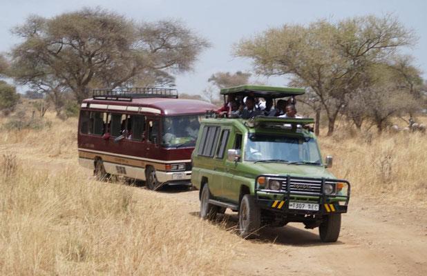 Insgesamt 45 Personen, darunter 31 Schüler, waren mit einem Bus und zwei Jeeps unterwegs.
