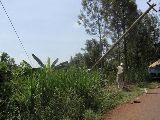 Die Ursache unseres Stromausfalls am 31.12.13, ein umgestürzter Elektromast, wird am 1. Januar 2014 (auch in Tansania ein FEIERTAG!!) beseitigt.