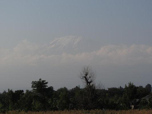 Die westliche Ansicht des Kilimandscharus im Abendlicht.