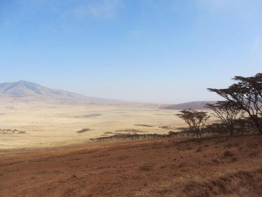 Äußerer Ngorongoro-Kraterrand
