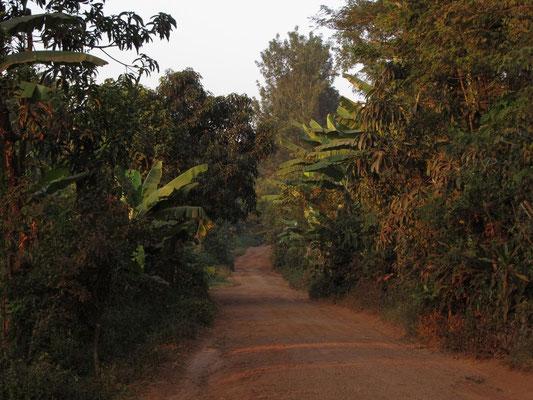 Die nur teilweise geteerte Straße von Moshi nach Kishumundu kurz vor Sonnenuntergang.