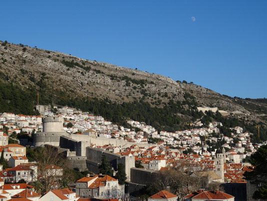 Blick vom Westen über die Altstadt.