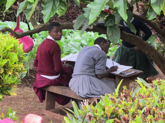 Schüler bereiten sich auf dem Schulhof auf eine Prüfung vor.