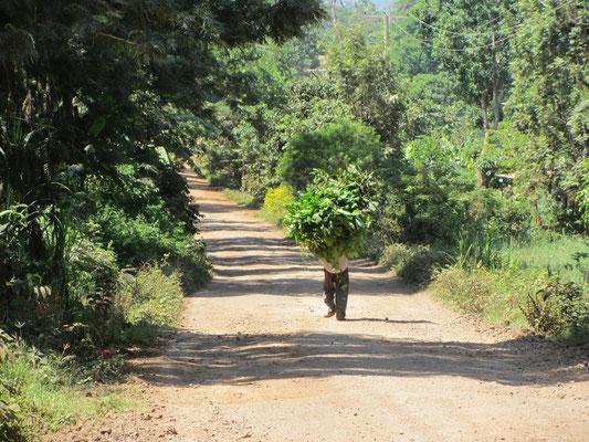 Straßenszene von der Straße nach Kishumundu.