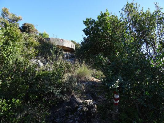 Bunker aus dem letzten Krieg sind vollständig in die Natur integriert.