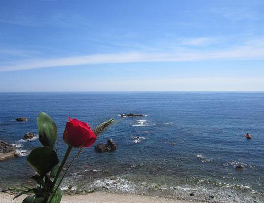 Diumenge dia de St Jordi 23.04.17 a les 14:45 h. JPG