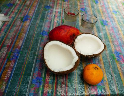 erste kokosnuss