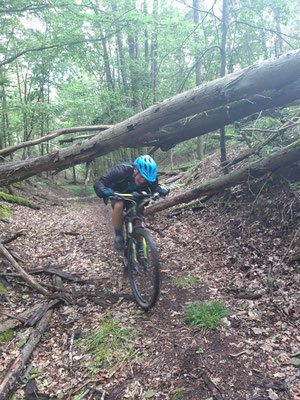 Entdecken mit dem Mountainbike