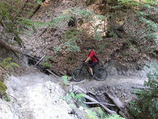 MB-Trail Jägersteig