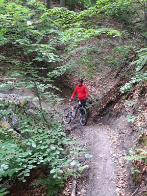 MB-Trailgebiet Böhlgrund