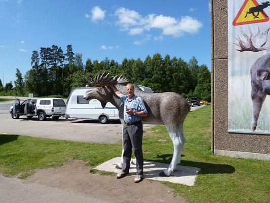 elchmuseum bei der zufahrt zum elchpark.