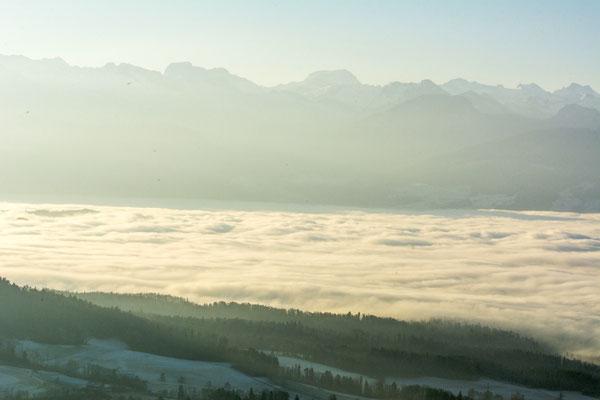 nebelmeer über dem zürichsee vom bachtel aus